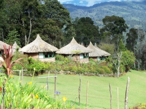 1 Ambua lodge (2)