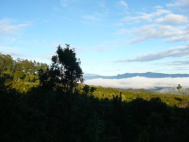 4 Rondon Ridge to Mt Hagen (2)